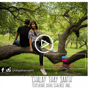 The Upcoming Pakistani Movie Chalay Thay Saath