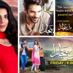 dil-banjaara-hum-tv-drama-serial