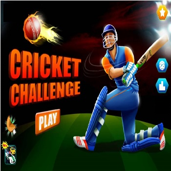 Cricket Challenge - Play Sports Games online