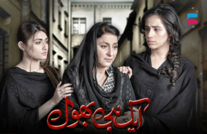 Ek Hi Bhool – ARY Digital Drama