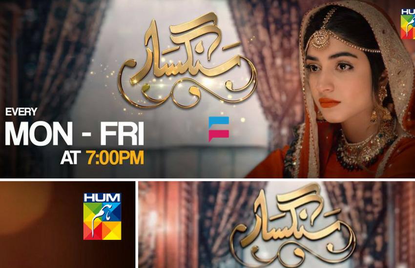 Sangsar - Hum Tv Drama