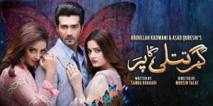 Ghar Titli Ka Par – GEO Tv Drama