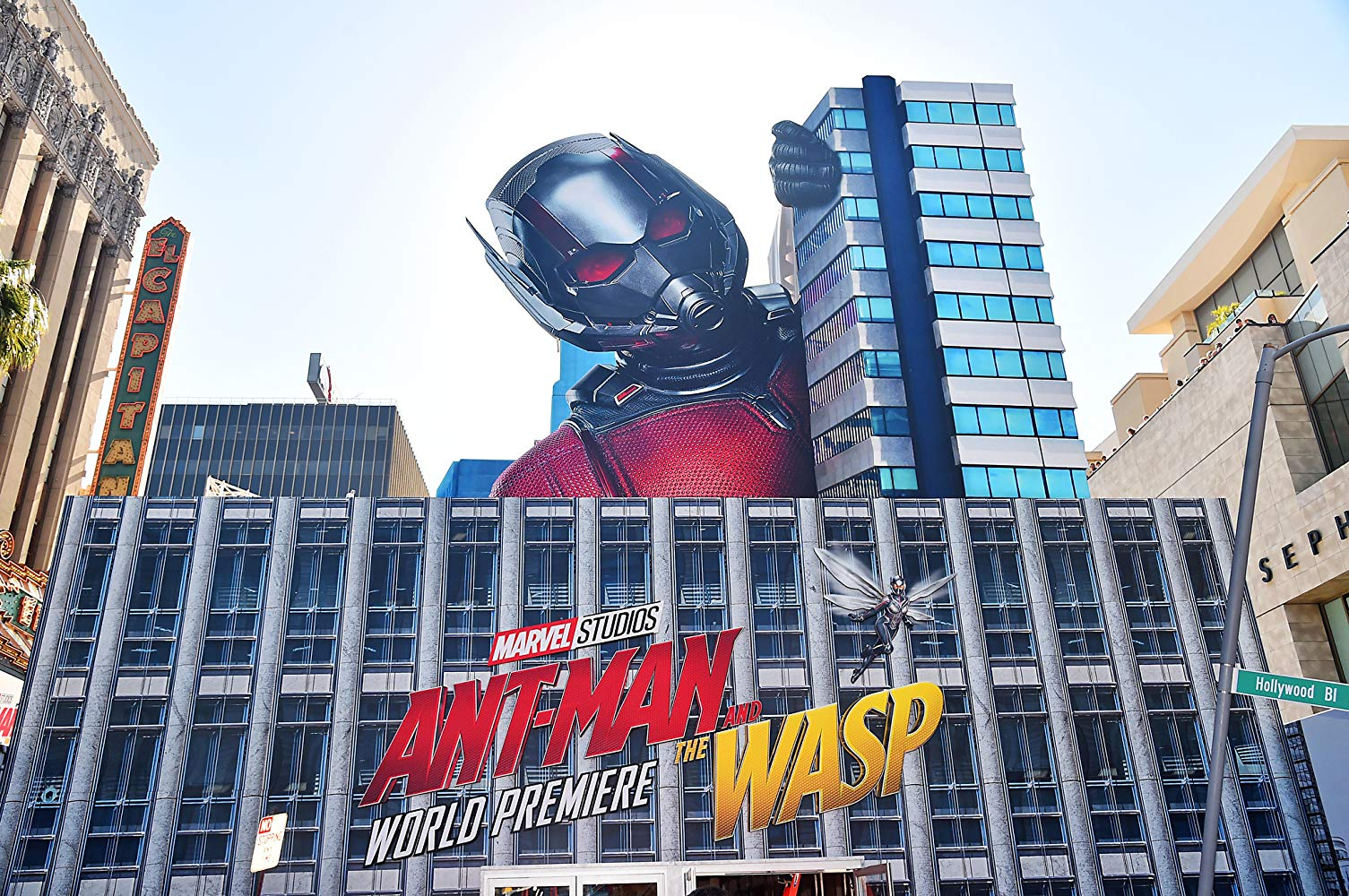 Ant-Man and the Wasp - featured img