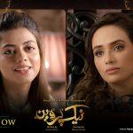 Naik Parveen geo tv drama2