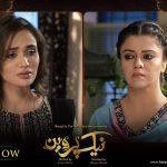 Naik Parveen geo tv drama6