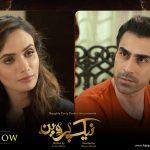 Naik Parveen geo tv drama8