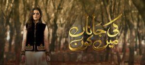 Ki Jaana Mein Kaun – Hum Tv Drama