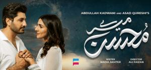 Mere Mohsin – GEO Tv Drama