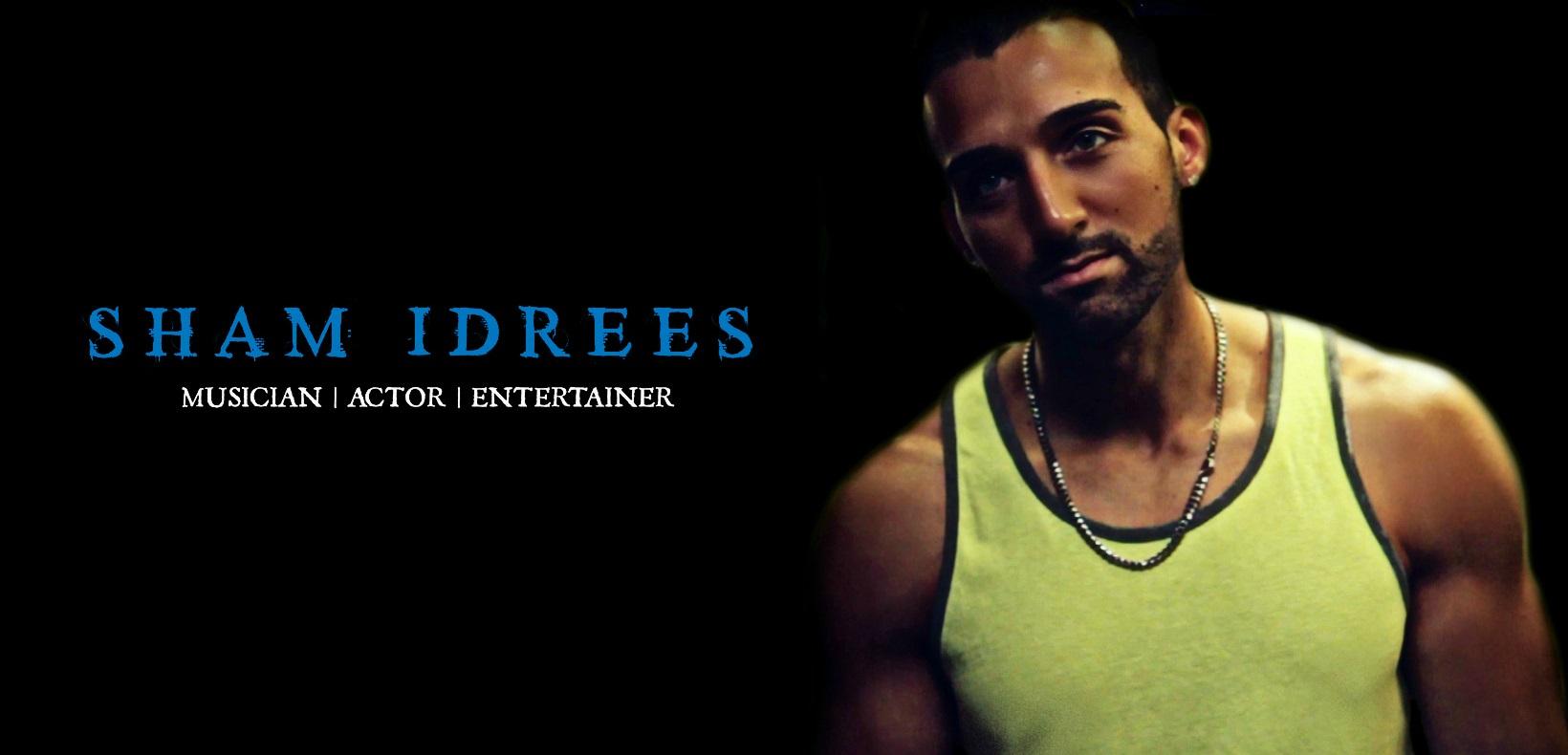 sham idress cover image